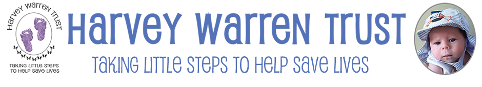 HARVEY WARREN TRUST